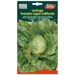 Semilla sobre lechuga Grandes Lagos California