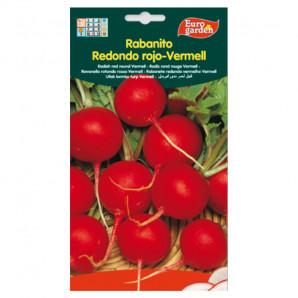 Semilla sobre rabanito Redondo Rojo-Vermell