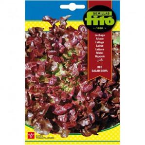 Semilla sobre lechuga Red Salad Bowl