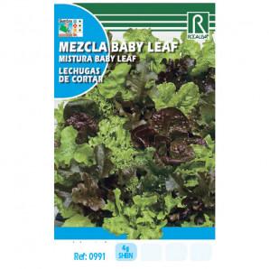 Semilla sobre lechuga mezcla Baby Leaf (lechugas de cortar)