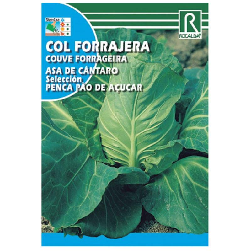 Semilla col forrajera Asa de Cántaro Pao Açucar