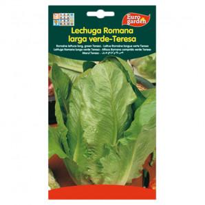 Semilla sobre lechuga Romana Larga Verde-Teresa