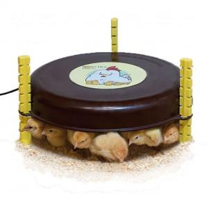Calefactor pollitos Nanny Hen 220 V
