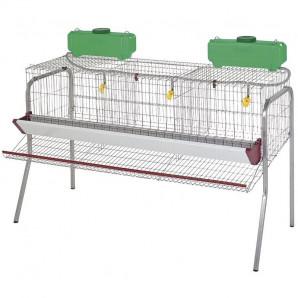 Batería de gallinas ponedoras 3 departamentos