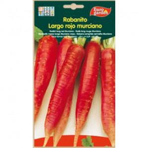 Semilla sobre rabanito largo rojo Murciano