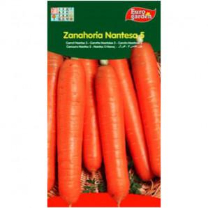 Semilla sobre zanahoria Nantesca