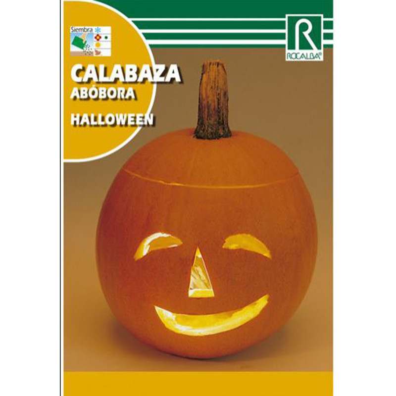 Semilla sobre calabaza Halloween